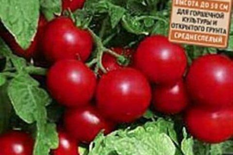 Томат Красная россыпь: отзывы, описание и характеристика сорта, фото, урожайность