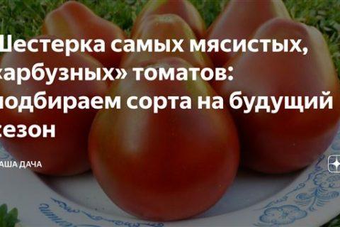Заказывай Семена Агрофирма Усадьба Томат Кузя F1 10 шт с доставкой на дом от сервиса доставки продуктов СберМаркет