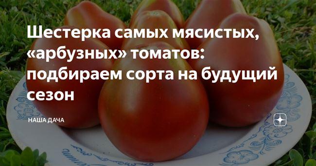 В очередной раз наученная горьким опытом выбрала сорта томатов для ог на будущий сезон
