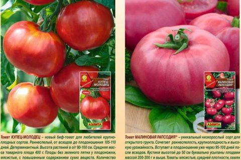 Томат Купчиха F1: отзывы тех кто сажал об урожайности, характеристика и описание сорта, фото куста