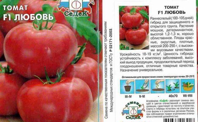 Богатый урожай при минимальных усилиях — томат Любовь земная: описание сорта и советы