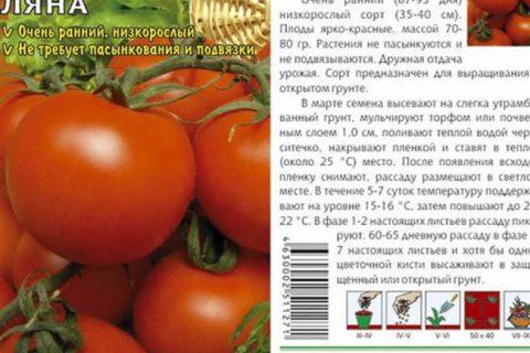 Среди многочисленных упаковок с семенами мне попался на глаза пакетик с сортом Ляна. Привлекла большая урожайность и размеры плодов. Купила. Высадила.