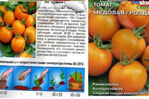 Томат Медовая гроздь: характеристика и описание сорта, фото, урожайность помидора, отзывы