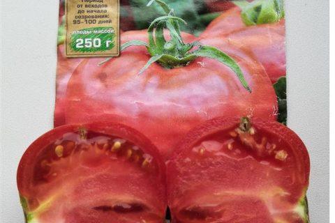 МИНИН F1 — cовременный биф-томат с высокой урожайностью! 🍅Томат… | Интересный контент в группе Агрофирма «АЭЛИТА»