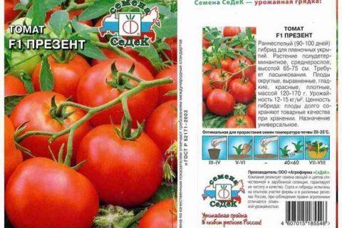 Томат Московский ранний: описание сорта, фото, урожайность, отзывы