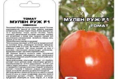 Томат Мулен Руж: описание и характеристика сорта, особенности выращивание сорта