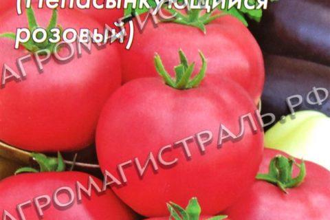 Томат Непас 3 непасынкующийся розовый: описание сорта, особенности выращивания, отзывы о помидоре