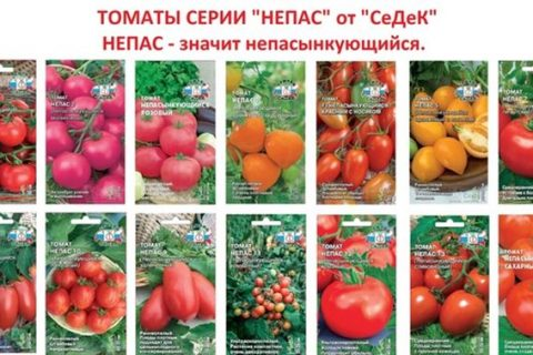 Особенностью сорта томатов Непас считается наличие в нем 14 подвидов. Каждый из них имеет индивидуальные характеристики роста культуры и формирования плодов.