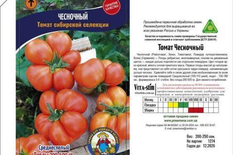 Отзыв о Семена томата Гавриш «Новогодний» | Это не томаты, это чудо-юдо!