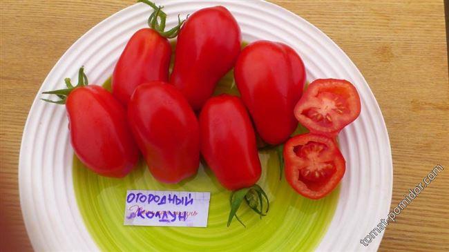 Томат Огородный колдун: описание и характеристика сорта, урожайность с фото