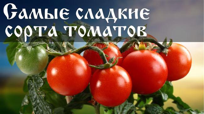 Семена томатов для закрытого грунта (теплицы)