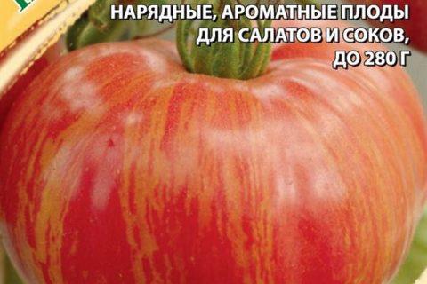 Полосатые томаты: полное описание интересных сортов с фото