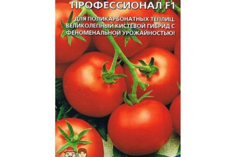 Томат профессионал f1: отзывы, фото, характеристика и описание сорта, урожайность