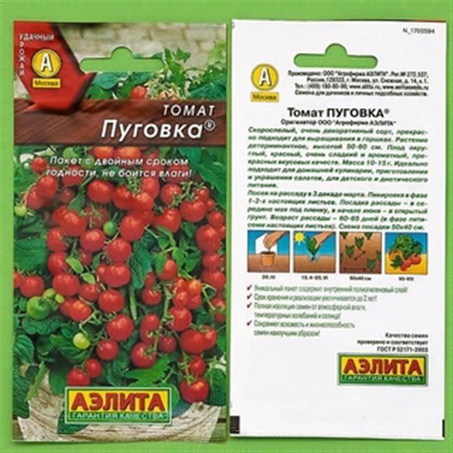 Выращиваем крошечные помидоры на грядке и в домашних условиях — томат «Пуговка» и тонкости ухода за ним