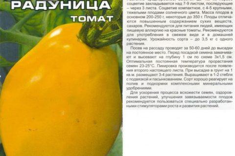Томат Радуница: характеристика и описание сорта, фото желтых помидоров, отзывы об урожайности куста