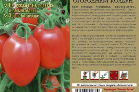 Характеристика и описание картофеля сорта Реванш