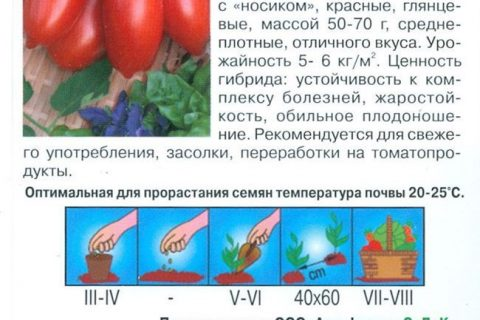 Родничок — сорт растения Томат