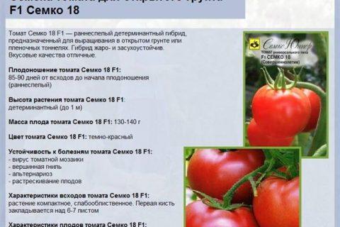 Томат Розовый гигант: отзывы, секреты выращивания, описание, фото