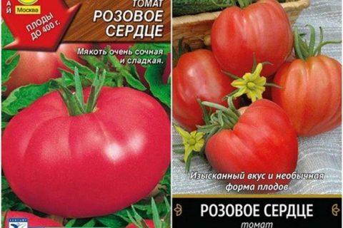 Томат Розовый гламур: отзывы об урожайности, характеристика и описание сорта, фото
