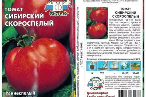 Томат Сибиряк f1: характеристика и описание сорта, урожайность с фото