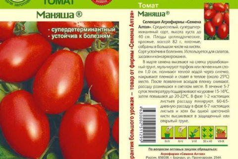 Сольный Номер Томат Включен в Госреестр по Российской Федерации для выращивания в открытом грунте и под временными пленочными укрытиями в ЛПХ. Салатный и для цельноплодного консервирования. Среднеранний. Растение детерминантное. Лист мелкий, зеленый…
