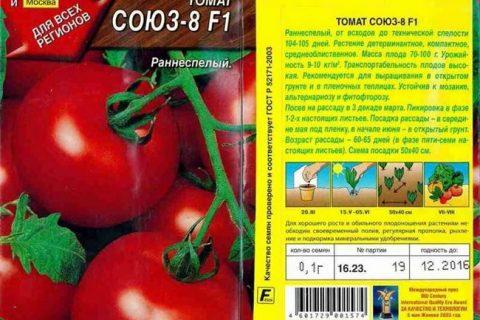 Томат Союз 8 F1: характеристика и описание сорта, отзывы об урожайности, фото помидоров