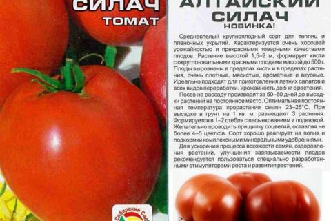 Обзор самых урожайных сортов томатов этого года с фото, описанием, названиями и подробной характеристикой. Приводим список видов для балкона, теплицы, открытого грунта, консервирования и вяления.