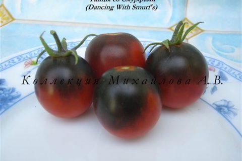 Томат Танцы со Смурфами: характеристика и описание сорта, отзывы об урожайности, фото помидоров