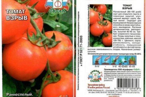 Тимур — сорт растения Томат