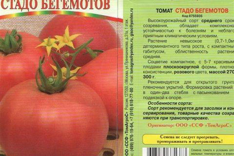 Высокорослый гибрид томата. Начало плодоношения. Характеристика растения. Назначение.