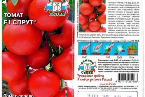 Описание томат сорта Топтыжка, его характеристики и выращивание