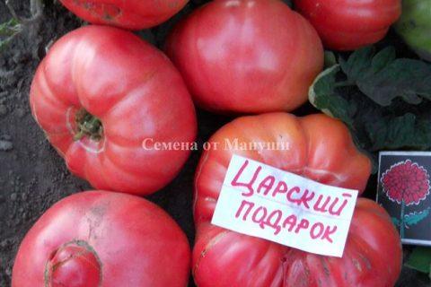 Фото, отзывы, описание, характеристика, урожайность сорта томата «Царский подарок».