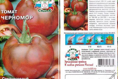 Томат Черномор: описание и характеристики, особенности посадки и выращивания, болезни и вредители, достоинства и недостатки