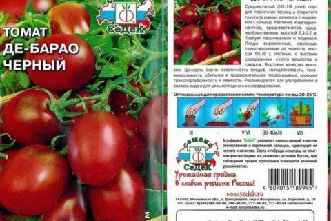 Черри Малиновая — сорт растения Томат