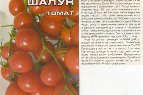 Томат Шалун
