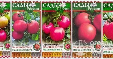 Томат «Малиновое чудо»: описание, характеристики сорта, особенности ухода Русский фермер