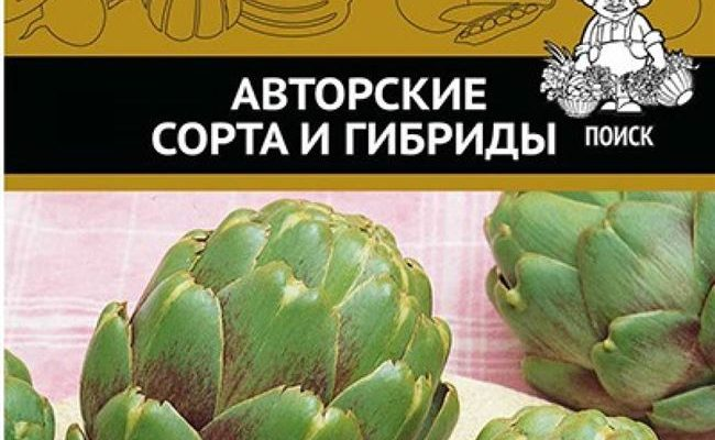 Популярные виды артишока. Описание и нюансы выращивания из семян сорта Султан, Гурман и других
