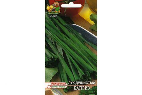 Лук душистый Каприз: отзывы о выращивании из семян, когда и как посеять, фото, описание сорта