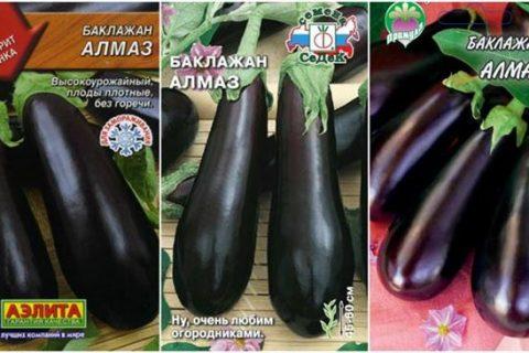 Баклажан Алмаз: характеристика и описание сорта, особенности выращивания и посадки, фото, отзывы