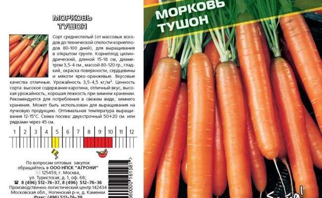 Все о сорте моркови Флакке: подробное описание, особенности выращивания и другие нюансы