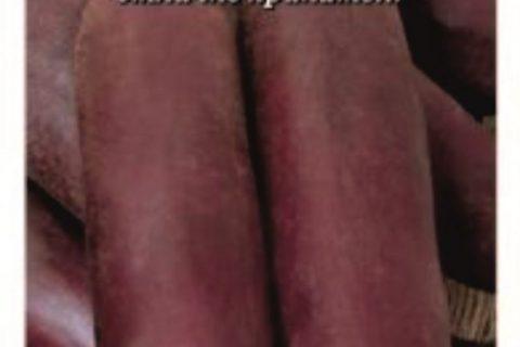 Свекла Цилиндра: отзывы, фото, описание сорта