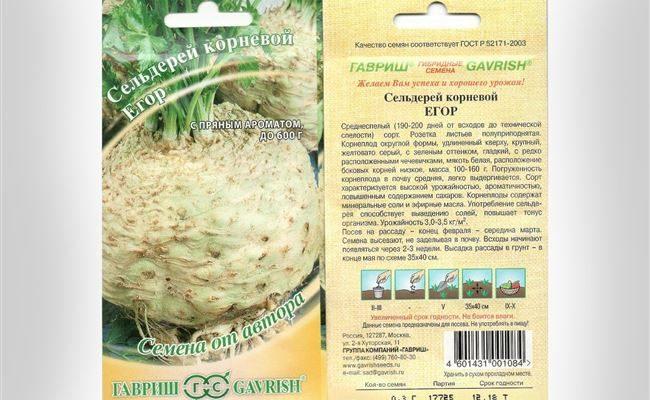 Сельдерей Егор