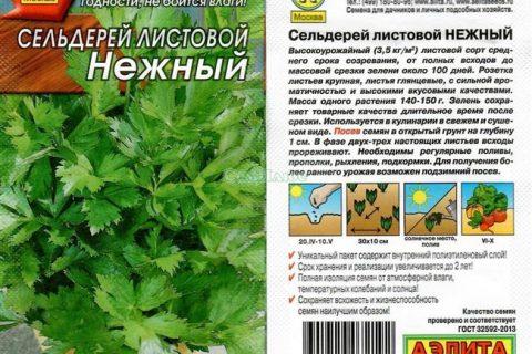Нежный — сорт растения Сельдерей черешковый и листовой