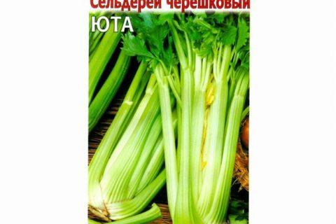 Сельдерей черешковый Хруст – среднеспелый сорт черешкового сельдерея