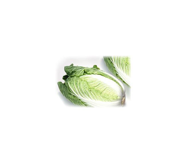Айкидо - сорт растения Капуста пекинская